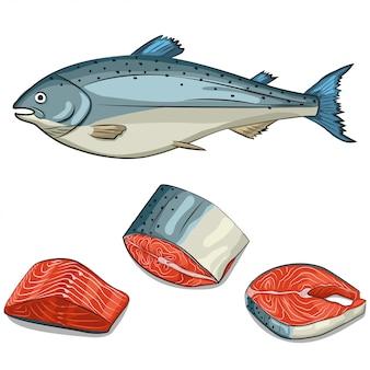 Set aus lachs, steak, filet und scheiben. illustration des karikaturhandabgehobenen betrages lokalisiert. meeresfrüchte-symbole.