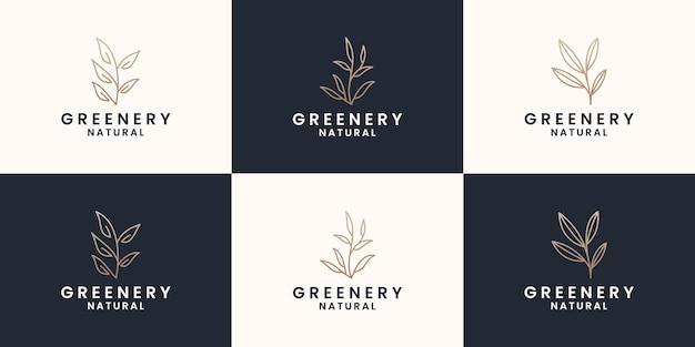 Set aus minimalistischem grünlogo-design, botanik, botanik, pflanze