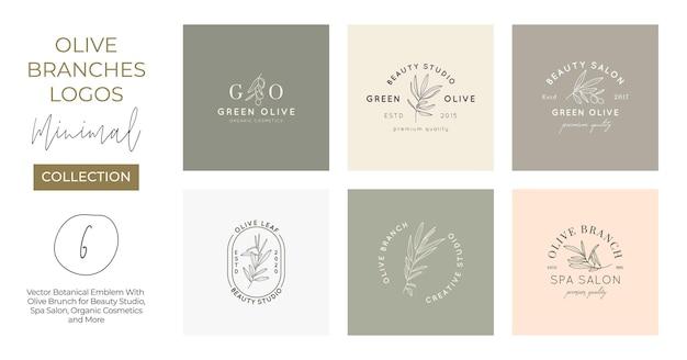 Set aus olivenzweig mit blättern logo-design-vorlage im einfachen minimalen linearen stil. abstrakte weibliche vektorzeichen mit blumenillustration für schönheitsstudio, spa, biokosmetik, studio