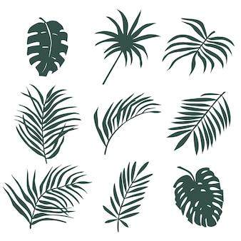 Set aus palmblättern