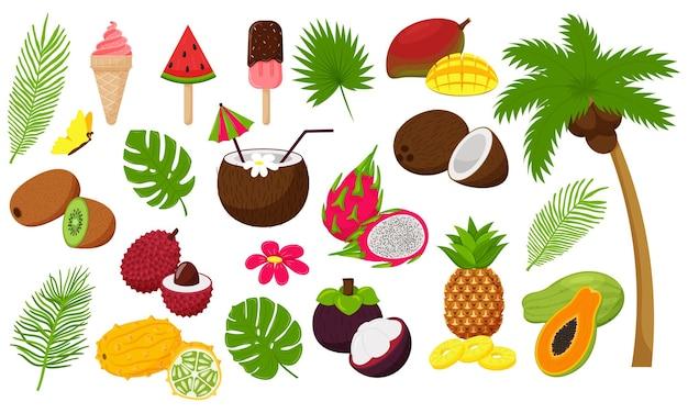 Set aus tropischen blättern und exotischen früchten. palme mit kokosnuss und eiscreme, cocktail