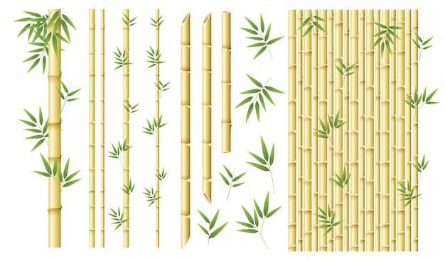 Set aus verschiedenen bambus