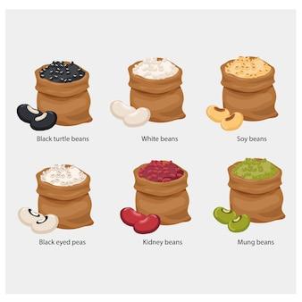 Set beutel mit bohnen, schwarzen schildkrötenbohnen, weißen bohnen, sojabohnen, schwarzen augenerbsen, kidneybohnen, mungobohnen.