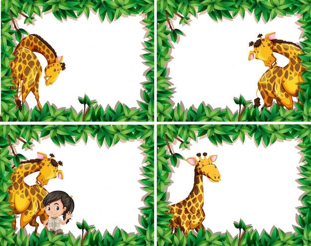 Set der giraffe im naturrahmen