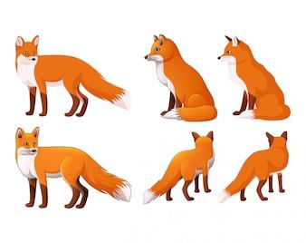 Set der roten Fox-Karikatur