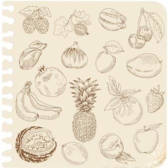 Set doodle fruits - für sammelalbum oder design - handgezeichnet