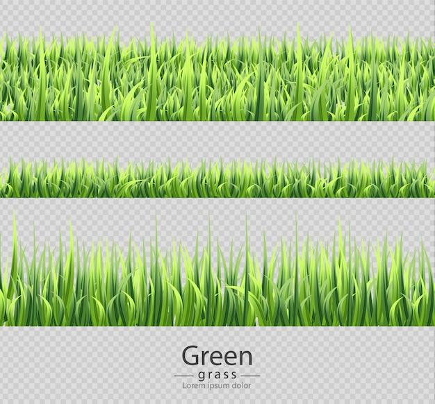 Set grüne sammlung des grünen grases