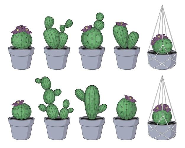 Set grüner kaktus in töpfen mit blumen