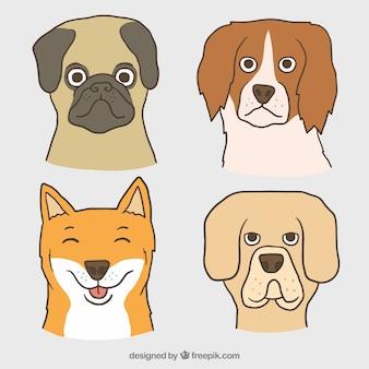 Set hand gezeichnete hunde