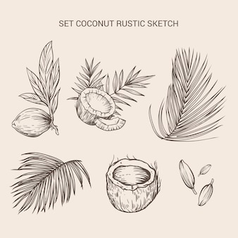 Set kokoselement rustikale skizze