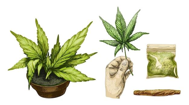 Set marihuana zigaretten hand halten blatt plastiktüte pflanze cannabis in topf vektor gravur