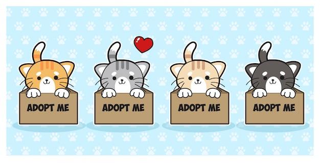 Set mit 4 kawaii-katzen. nette 4 katzen, die auf adoption in papierbox warten. zeichentrickfigur.