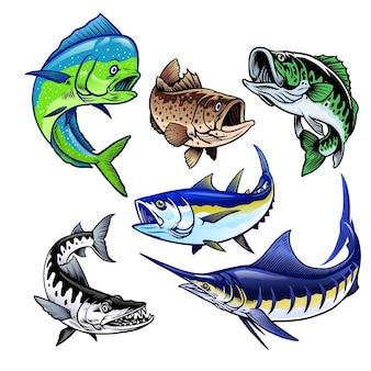 Set mit gamefish-bundle-sammlung