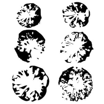 Set mit sechs zitronenabdrücken. schwarze drucke auf einem isolierten weißen hintergrund.