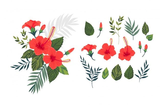 Set mit tropischen blumen und blättern. hibiskusblüten.