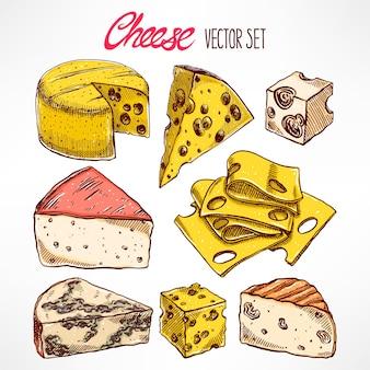 Set mit verschiedenen handgezeichneten käsesorten. handgezeichnete illustration