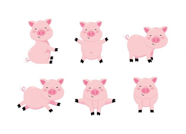 Set niedlichen schwein wildes tier charakter
