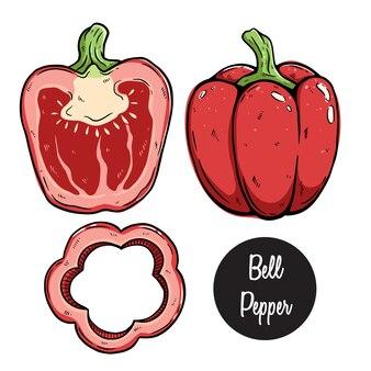 Set paprika mit farbiger handzeichnung oder skizzenhaftem stil