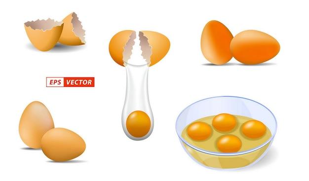 Set realistischer glänzender hühnereier isoliert oder hühnereierschale mit hellem stil oder gebrochenem ei