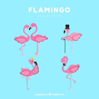 Set rosa flamingos mit verschiedenen haltungen