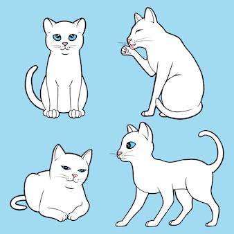 Set süße weiße katzen