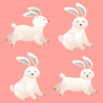 Set süßes kaninchen