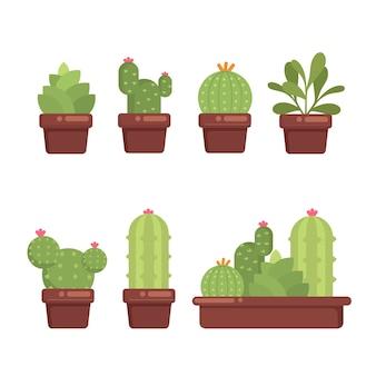 Set sukkulente kaktus kaktus zimmerpflanzen blumensammlung illustration