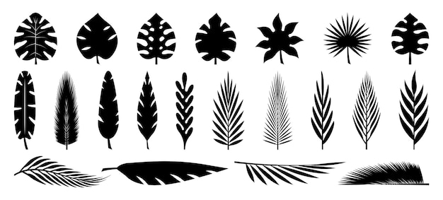 Set tropische blätter silhouetten sammlung palmblätter