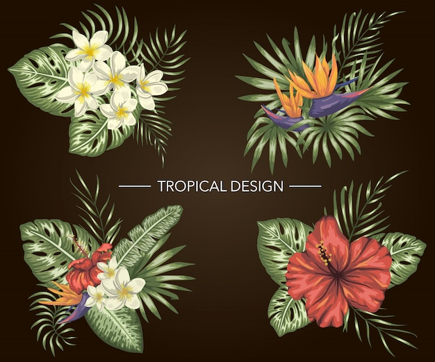Set tropischer kompositionen mit hibiskus, plumeria, strelitzia-blüten, monstera und palmblättern