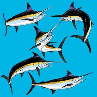 Set von black marlin für die gamefish-bundle-sammlung