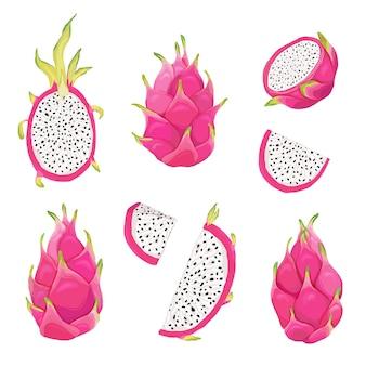 Set von drachenfrüchten und pitaya-illustrationsgestaltungselementen. handgezeichneter vektor im aquarellstil für romantische sommerabdeckung, tropische tapete, vintage-textur