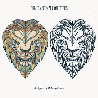 Set von ethnischen löwen in farbe und schwarz-weiß