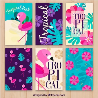 Set von flamenco-karten und tropischen blumen