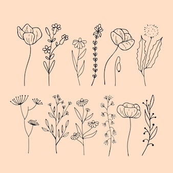 Set von floralen elementen botanischen blatt dekorative handgezeichnete elemente