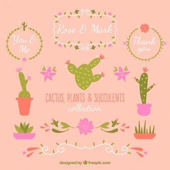 Set von hand gezeichnet kaktus dekoration für hochzeit