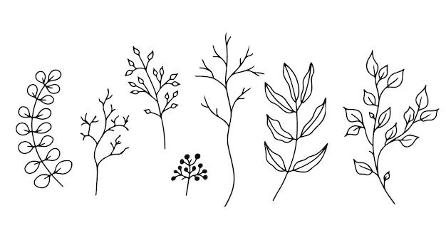 Set von handgezeichneten floralen elementendoodle pflanzen und zweigen auf weißem hintergrund