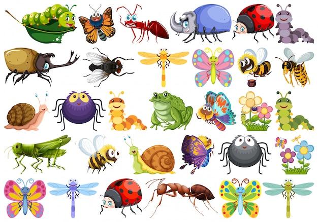 Set von insektenzeichen