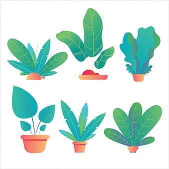 Set von pflanzen