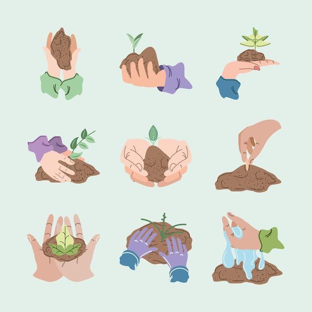 Set von pflanzenwachstum