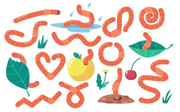 Set von regenwürmern, bodenregenwürmern, raupeninsekten. nature wildlife creature, garten wirbellose würmer essen grünes blatt oder apple isoliert auf weißem hintergrund. cartoon-vektor-illustration