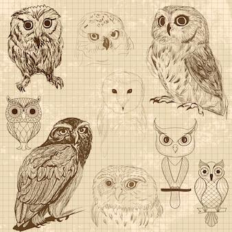 Set von retro-eule skizzen