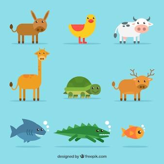 Set von schönen tieren