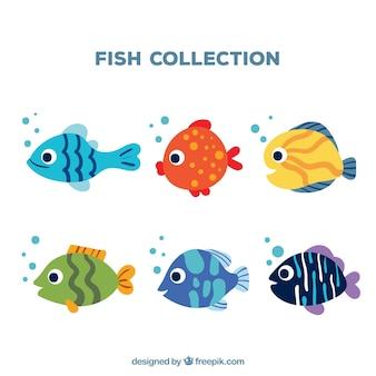 Set von sechs fischen