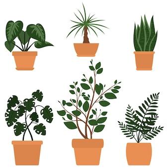 Set von sechs illustrationen von niedlichen cartoon-pflanzen in töpfen