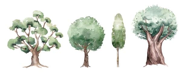 Set von verschiedenen arten von aquarellbäumen