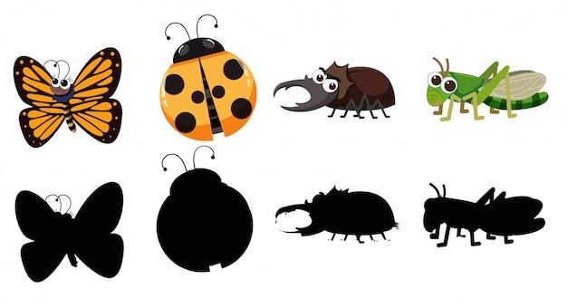 Set von verschiedenen insekten