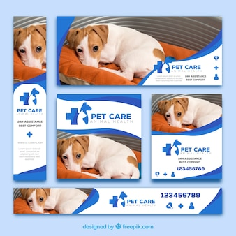 Set von veterinärfahnen