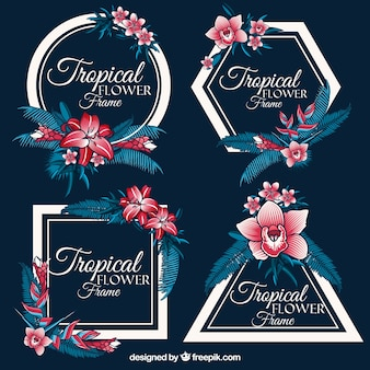 Set von vintage tropischen rahmen mit blumen