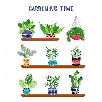 Set von zu hause topfpflanzen oder blumen in töpfen