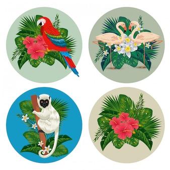 Setze etiketten mit exotischen tieren und tropischen blumen